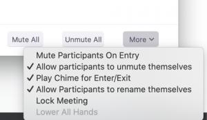 zoom-security-blog-lock-meeting